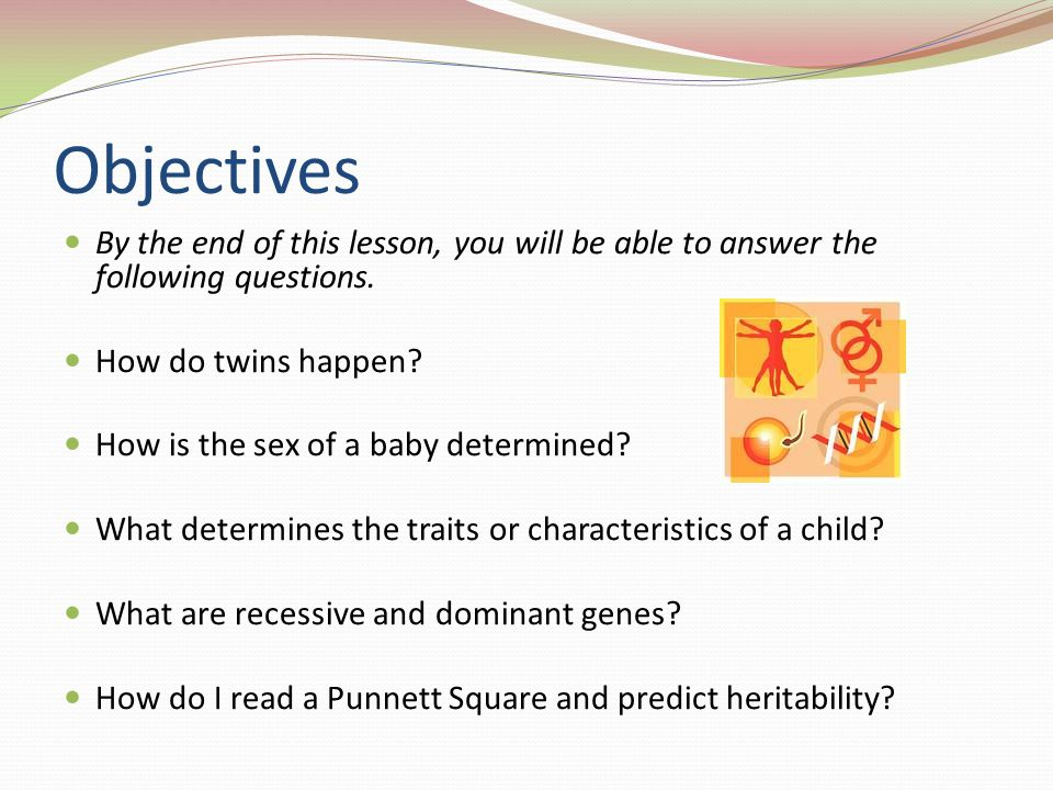Objectives By the end of this lesson, you will be able to answer the following questions. How do twins happen? How is the sex of a baby determined? Wh