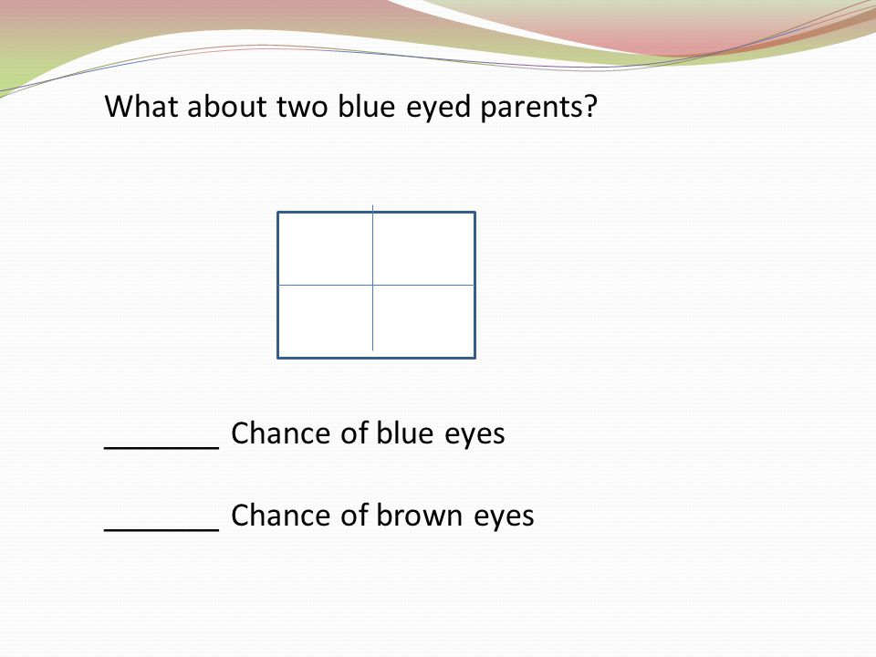 What about two blue eyed parents? _______ Chance of blue eyes _______ Chance of brown eyes