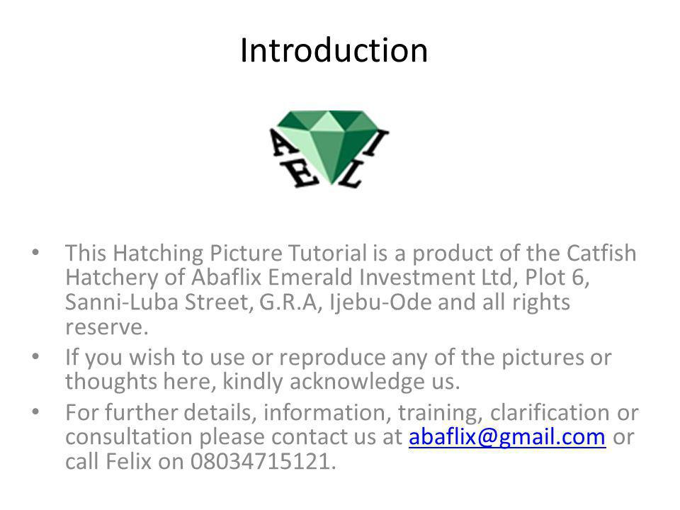 Introduction This Hatching Picture Tutorial is a product of the Catfish Hatchery of Abaflix Emerald Investment Ltd, Plot 6, Sanni-Luba Street, G.R.A, Ijebu-Ode and all rights reserve.