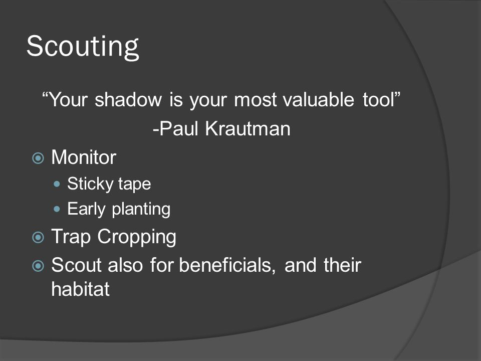 Scouting Your shadow is your most valuable tool -Paul Krautman Monitor Sticky tape Early planting Trap Cropping Scout also for beneficials, and their