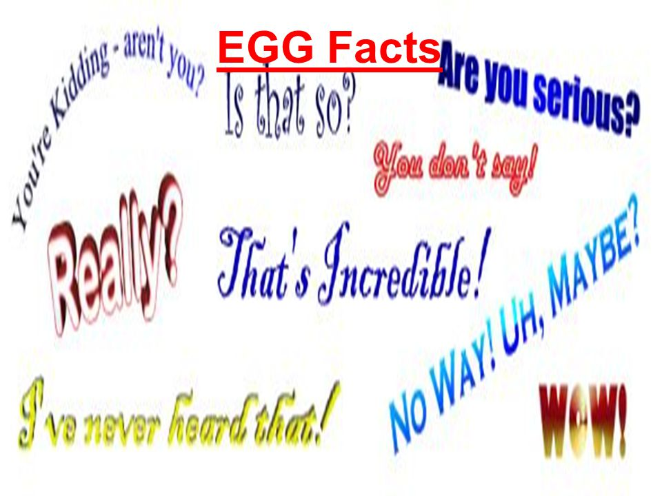 Many of the 100 ways to cook eggs are just different ways of using the basic methods of cooking eggs.
