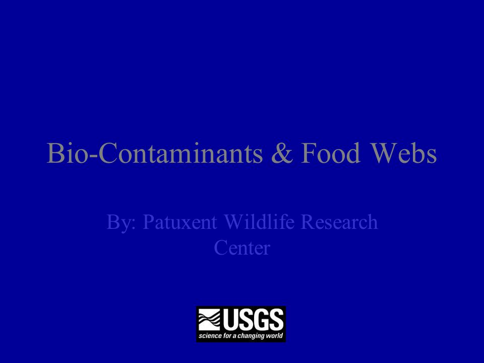 Bio-Contaminants & Food Webs By: Patuxent Wildlife Research Center