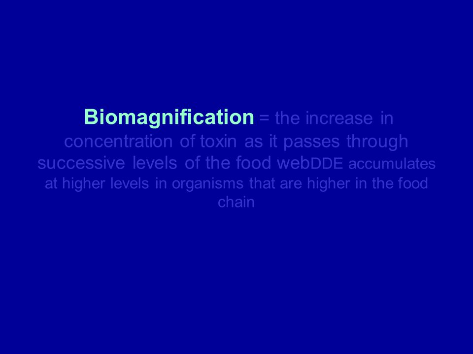 Biomagnification = the increase in concentration of toxin as it passes through successive levels of the food web DDE accumulates at higher levels in o