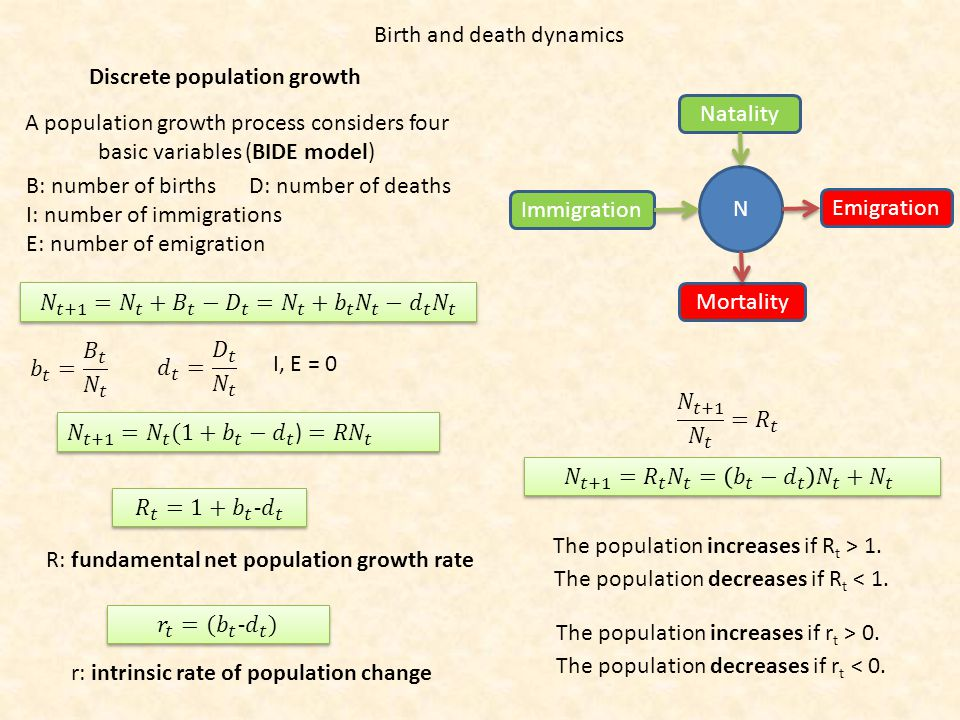 Birth and death dynamics A population growth process considers four basic variables (BIDE model) B: number of births D: number of deaths I: number of