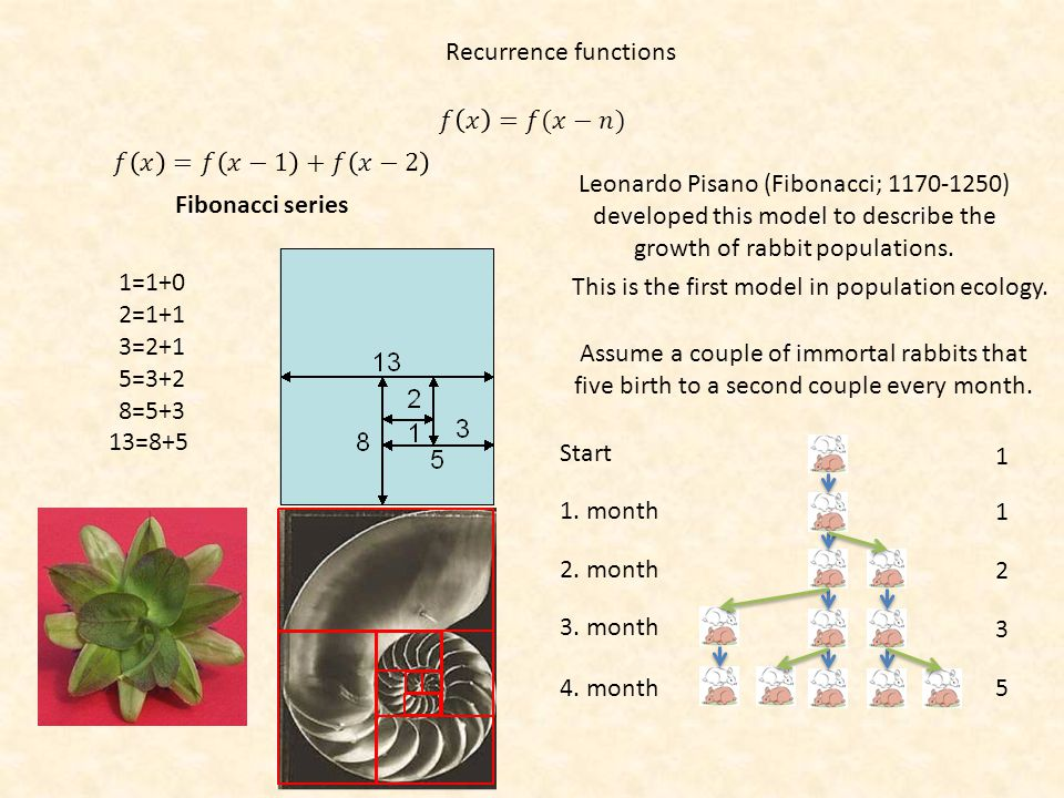 Recurrence functions Fibonacci series 1=1+0 2=1+1 3=2+1 5=3+2 8=5+3 13=8+5 Leonardo Pisano (Fibonacci; 1170-1250) developed this model to describe the