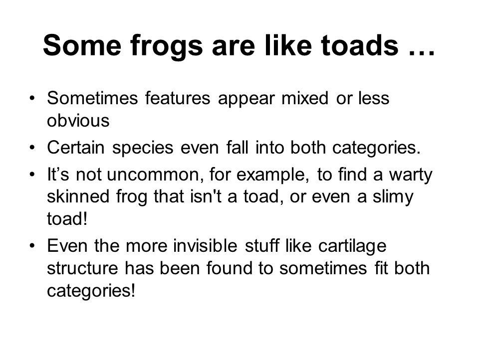 Life cycle The same life cycle for frogs and toads: Egg Tadpole Tadpole with legs Froglet/young toad Frog/toad