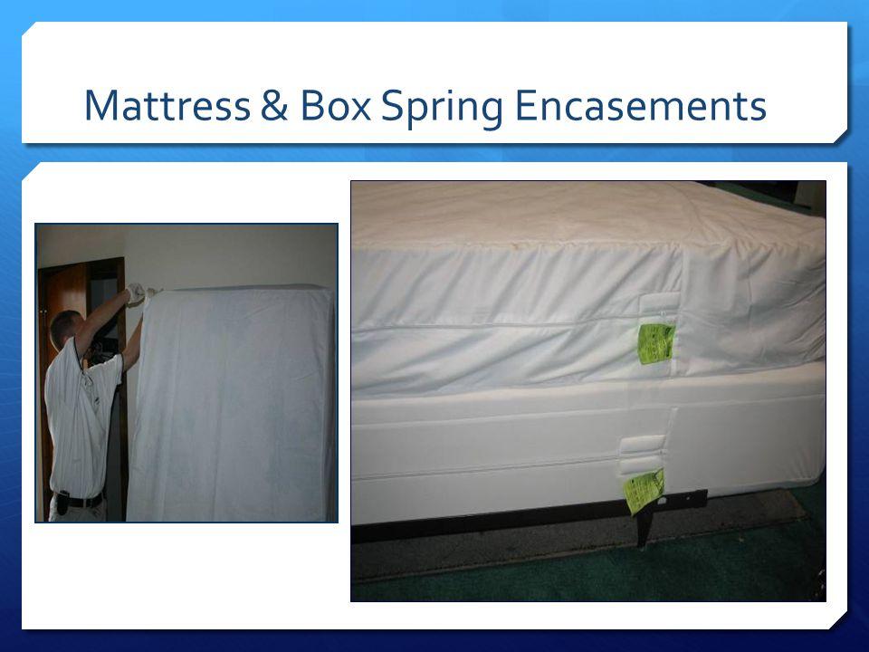 Mattress & Box Spring Encasements