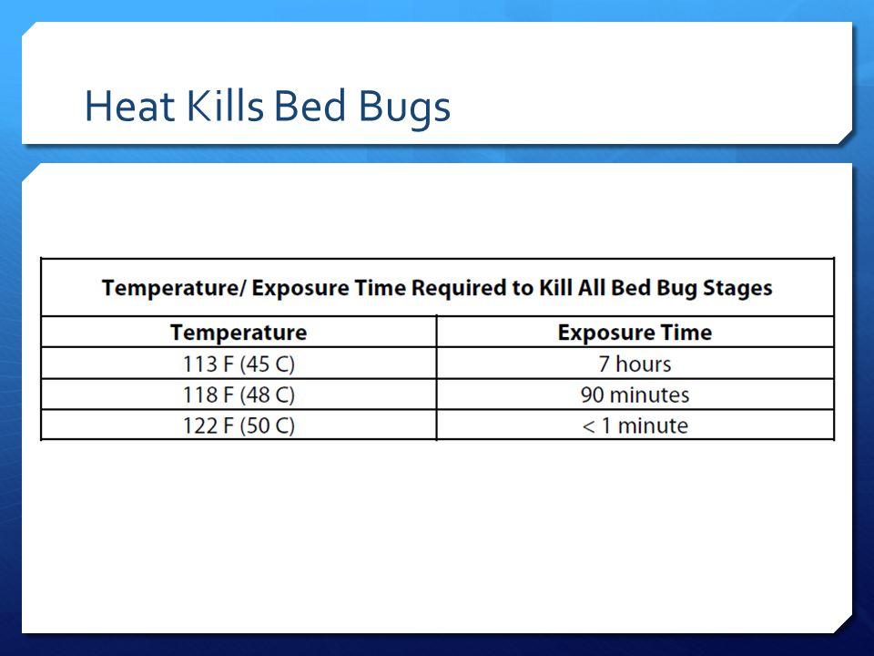 Heat Kills Bed Bugs