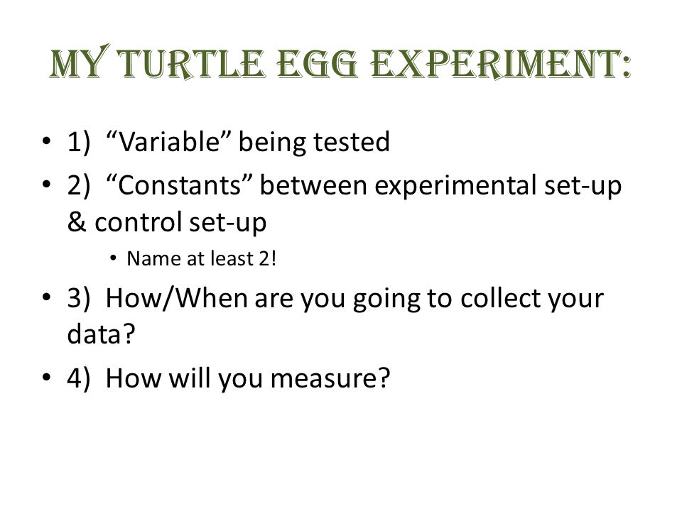 MY Turtle Egg EXPERIMENT: 1) Variable being tested 2) Constants between experimental set-up & control set-up Name at least 2.