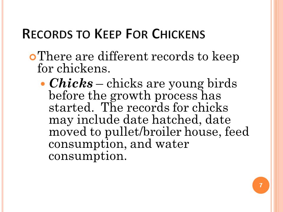 There are different records to keep for chickens. Chicks – chicks are young birds before the growth process has started. The records for chicks may in