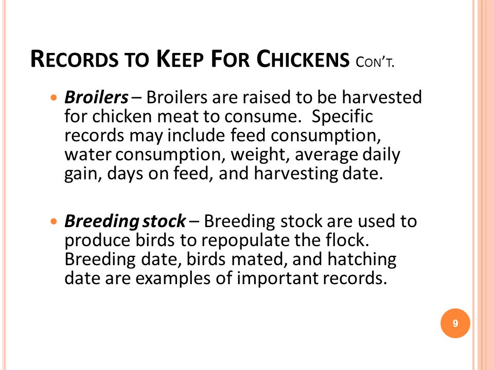 R ECORDS TO K EEP F OR C HICKENS C ON T. Broilers – Broilers are raised to be harvested for chicken meat to consume. Specific records may include feed