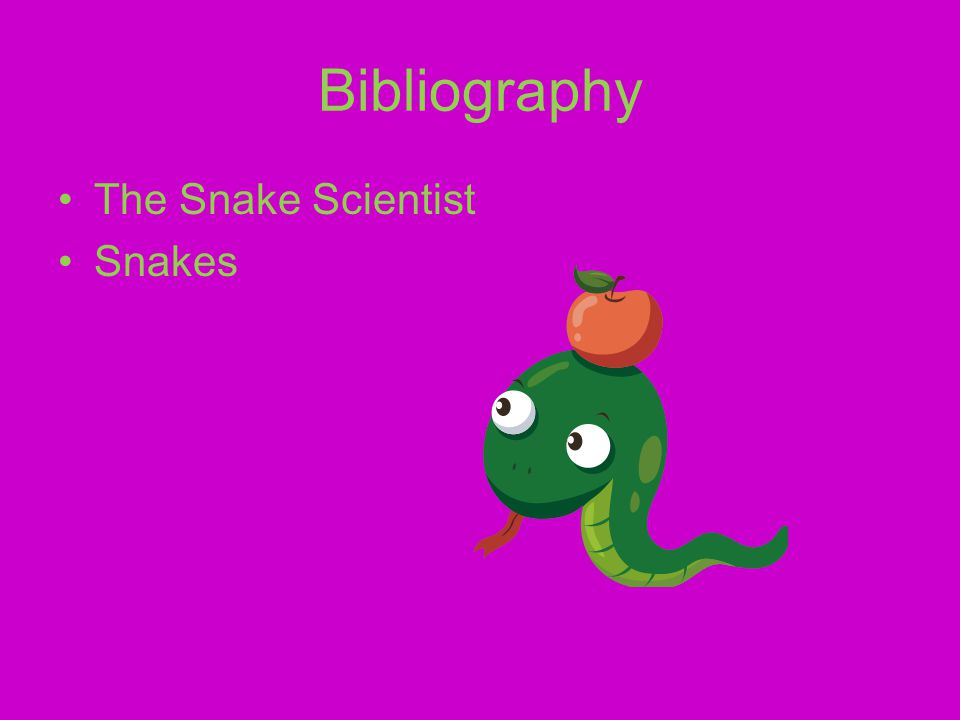 Conclusion That was my report about snakes. I hope you enjoyed it.