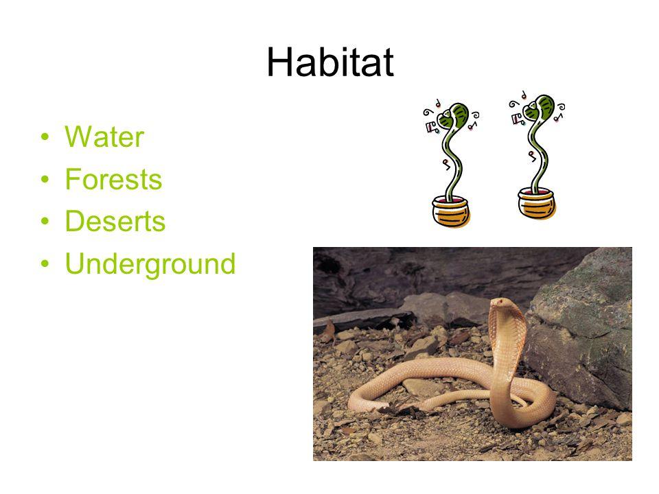 Habitat Water Forests Deserts Underground