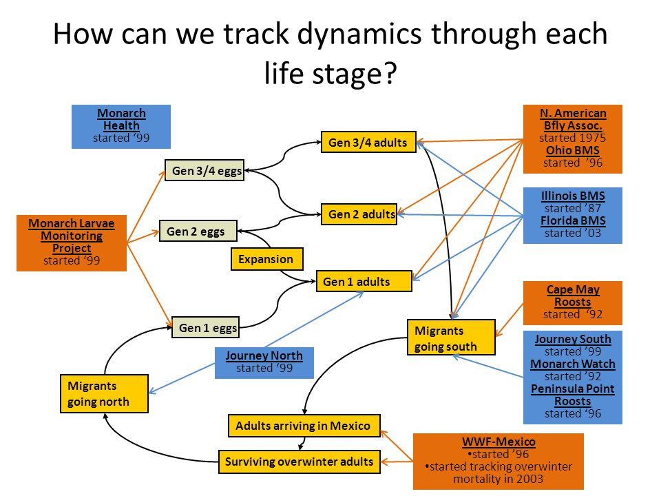 How can we track dynamics through each life stage? Surviving overwinter adults Gen 3/4 eggs Gen 2 adults Gen 2 eggs Gen 1 eggs Gen 1 adults Gen 3/4 ad