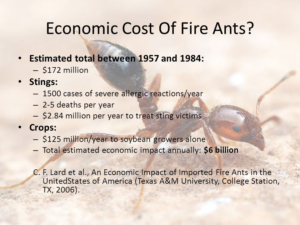 Economic Cost Of Fire Ants.