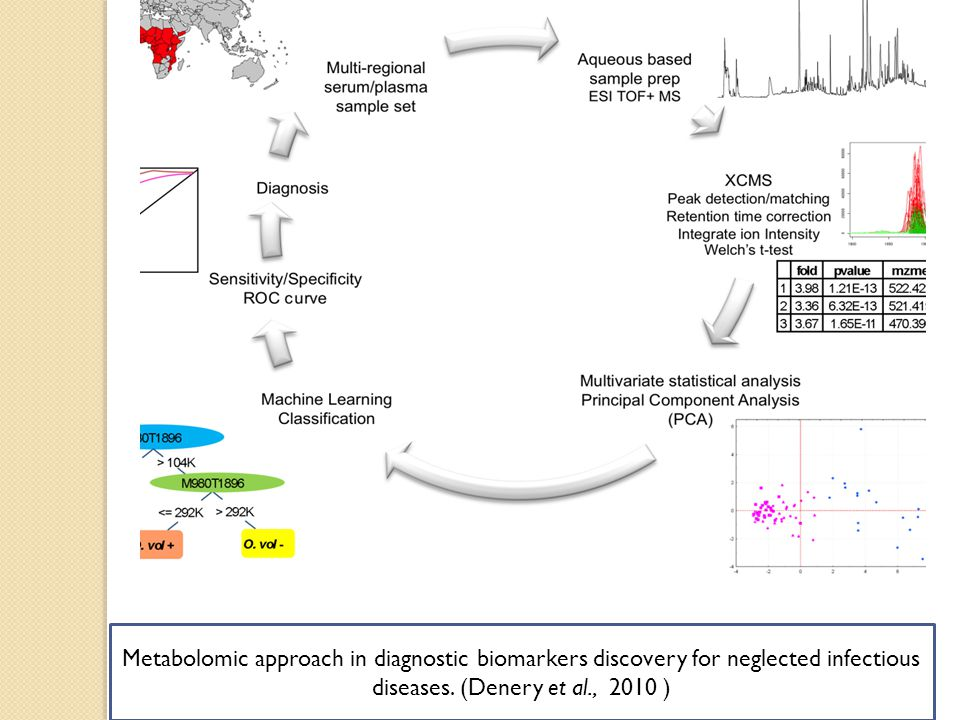 Metabolomic approach in diagnostic biomarkers discovery for neglected infectious diseases. (Denery et al., 2010 )