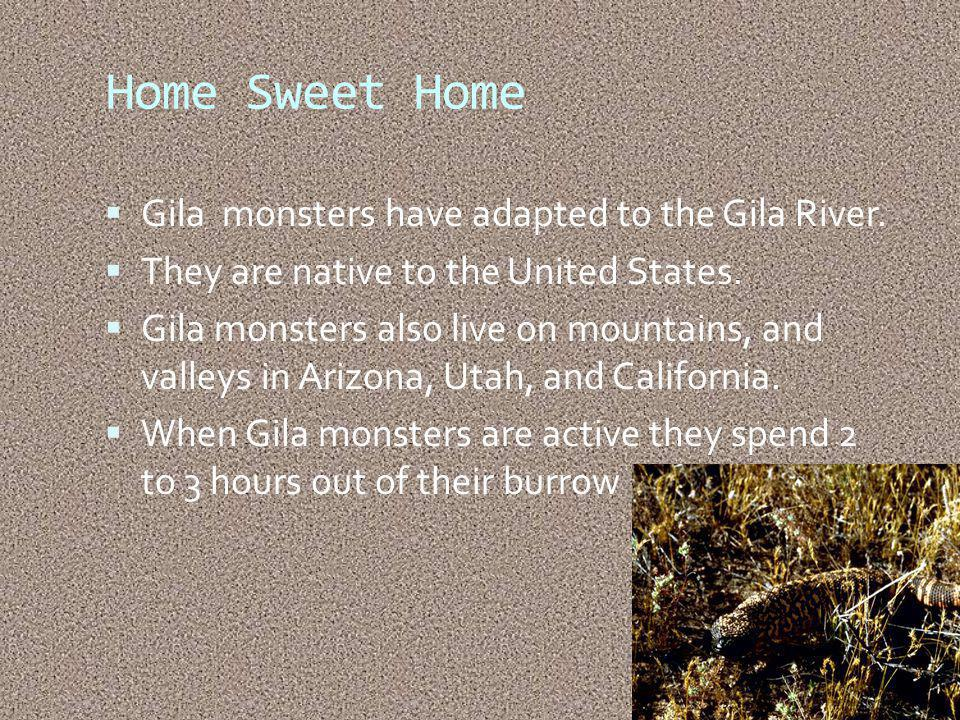 Home Sweet Home Gila monsters have adapted to the Gila River.