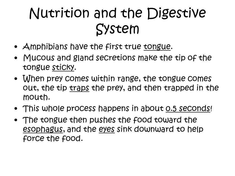 Nutrition and the Digestive System Amphibians have the first true tongue. Mucous and gland secretions make the tip of the tongue sticky. When prey com