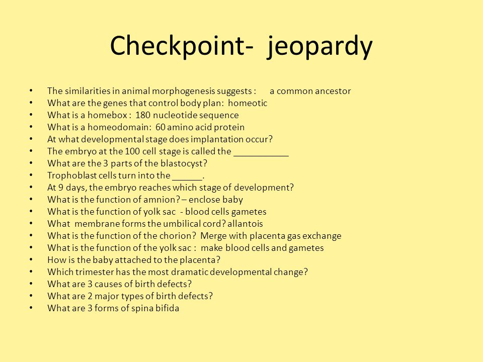 Checkpoint- jeopardy The similarities in animal morphogenesis suggests : a common ancestor What are the genes that control body plan: homeotic What is a homebox : 180 nucleotide sequence What is a homeodomain: 60 amino acid protein At what developmental stage does implantation occur.