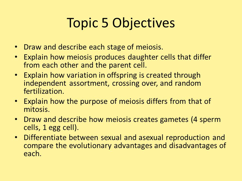 Topic 5 Objectives Draw and describe each stage of meiosis.