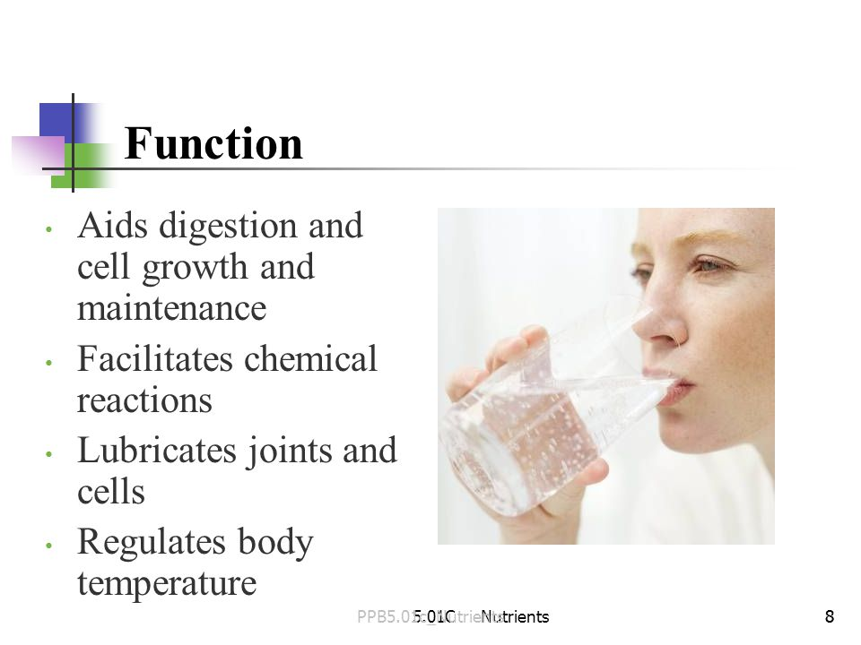 5.01C Nutrients88 Aids digestion and cell growth and maintenance Facilitates chemical reactions Lubricates joints and cells Regulates body temperature Function PPB5.01c_Nutrients
