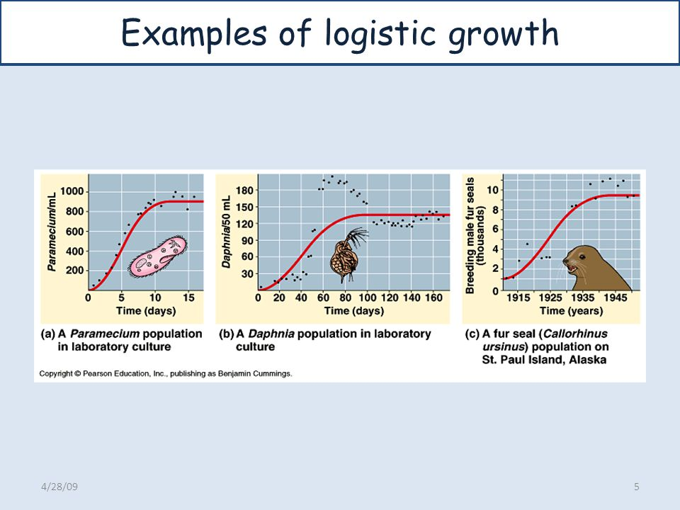 Examples of logistic growth 4/28/095