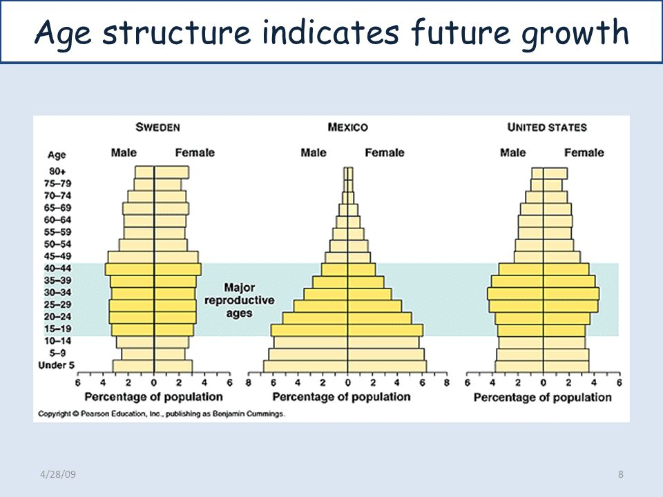 What is Effective Population size.