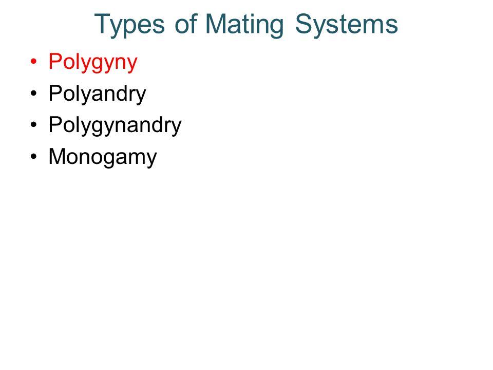 Types of Mating Systems Polygyny Polyandry Polygynandry Monogamy