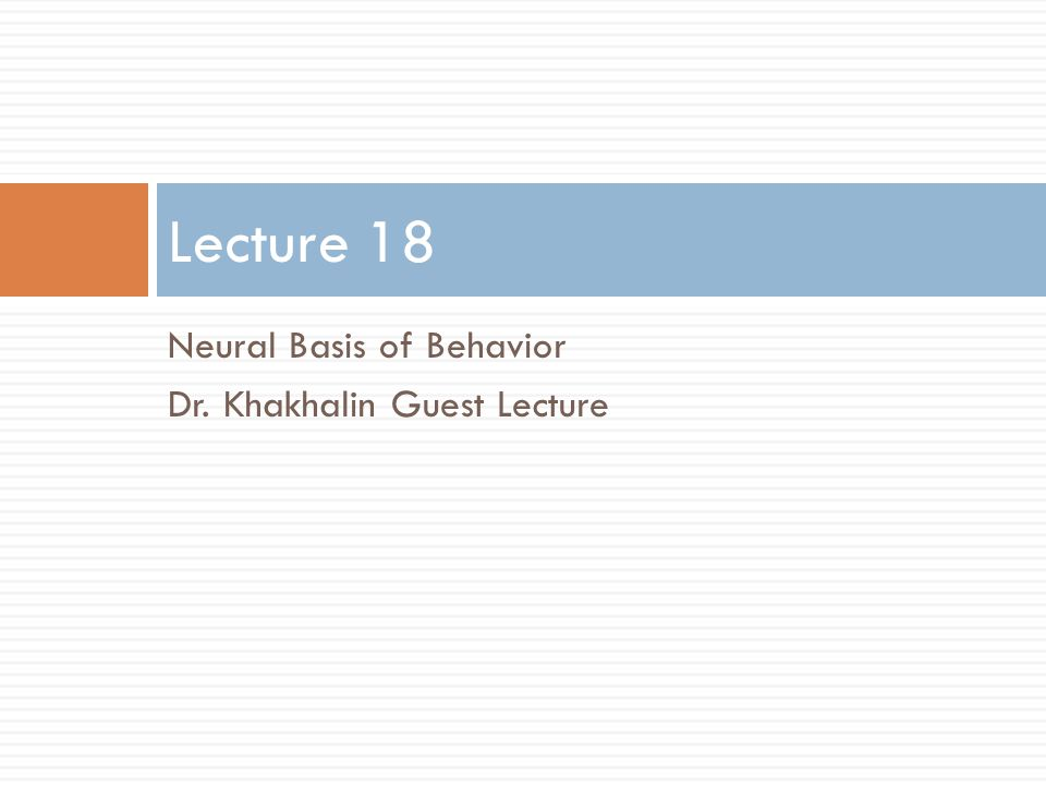 Neural Basis of Behavior Dr. Khakhalin Guest Lecture Lecture 18