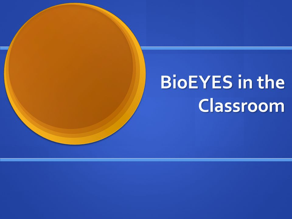 BioEYES: Day 1 The students will be divided into groups and will be able to choose a male and female fish.