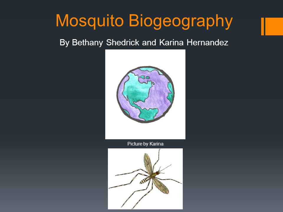 Mosquito Biogeography By Bethany Shedrick and Karina Hernandez Picture by Karina
