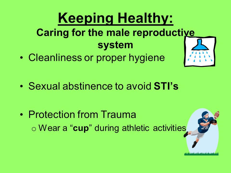 Keeping Healthy: Caring for the male reproductive system Cleanliness or proper hygiene Sexual abstinence to avoid STIs Protection from Trauma o Wear a