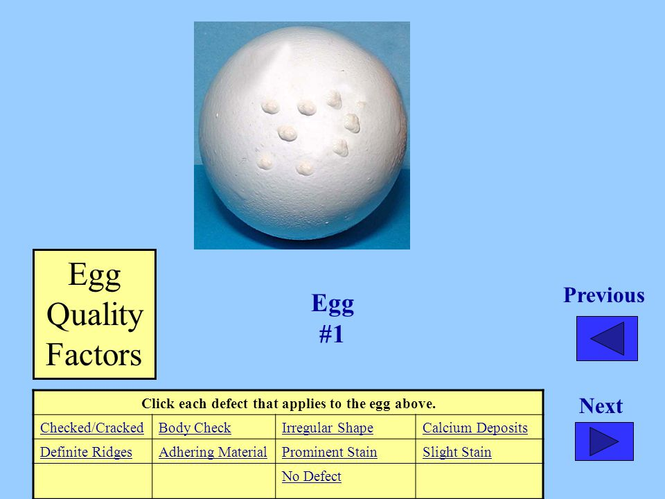Egg #1 Click each defect that applies to the egg above. Checked/CrackedBody CheckIrregular ShapeCalcium Deposits Definite RidgesAdhering MaterialPromi