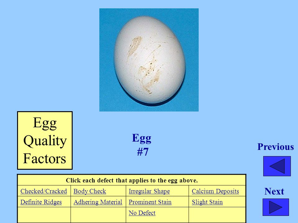 Click each defect that applies to the egg above. Checked/CrackedBody CheckIrregular ShapeCalcium Deposits Definite RidgesAdhering MaterialProminent St