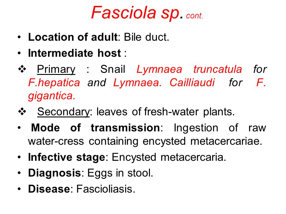 Location of adult: Bile duct. Intermediate host : Primary : Snail Lymnaea truncatula for F.hepatica and Lymnaea. Cailliaudi for F. gigantica. Secondar