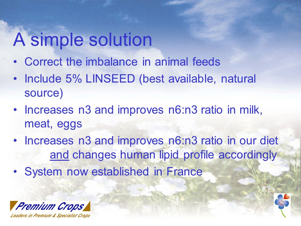A simple solution Correct the imbalance in animal feeds Include 5% LINSEED (best available, natural source) Increases n3 and improves n6:n3 ratio in milk, meat, eggs Increases n3 and improves n6:n3 ratio in our diet and changes human lipid profile accordingly System now established in France
