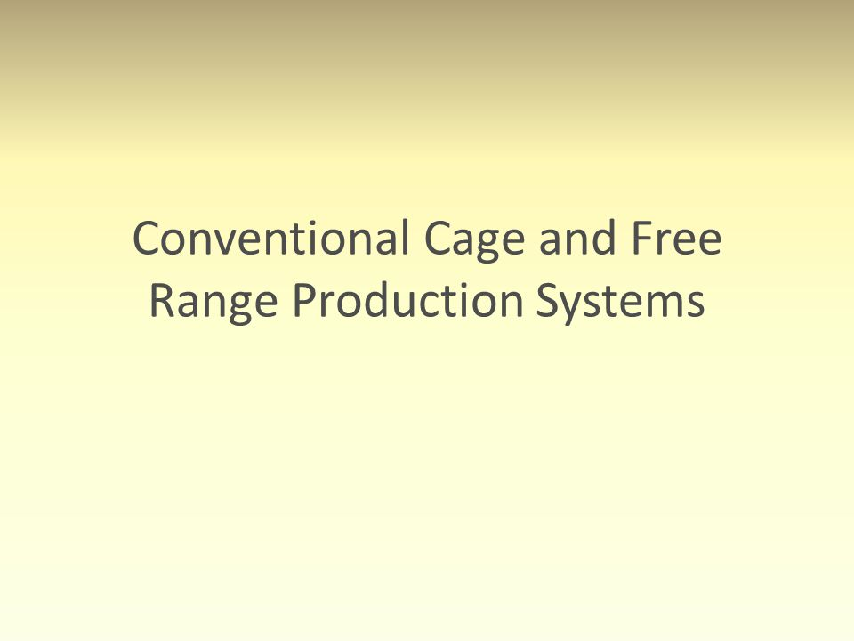 Conventional Cage and Free Range Production Systems