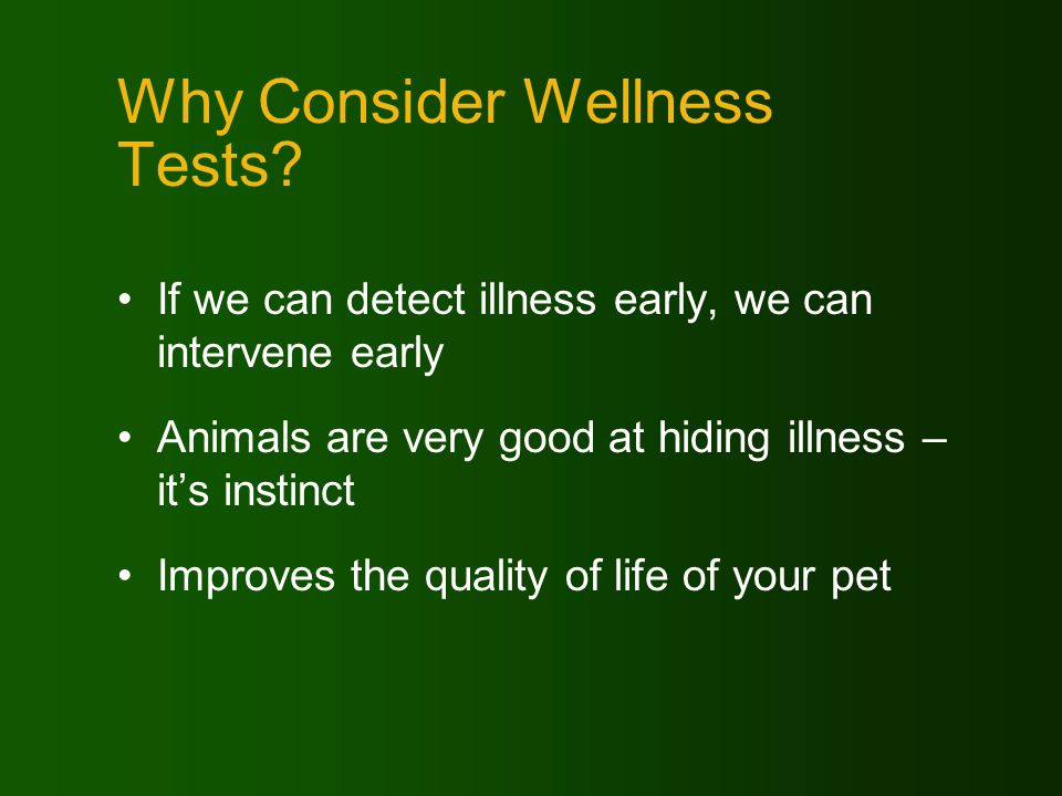 When Should We Test? Yearly At what age should these yearly tests begin?