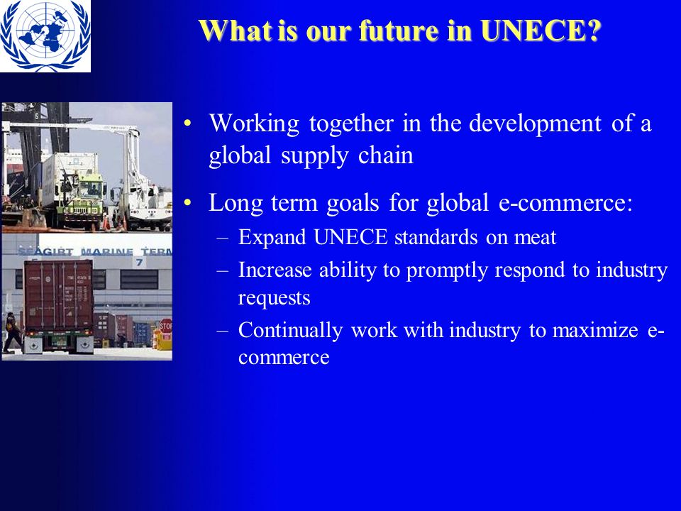 What is our future in UNECE.