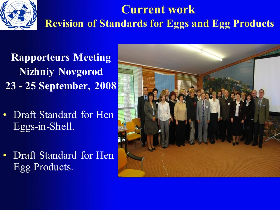 Current work Revision of Standards for Eggs and Egg Products Rapporteurs Meeting Nizhniy Novgorod 23 - 25 September, 2008 Draft Standard for Hen Eggs-in-Shell.