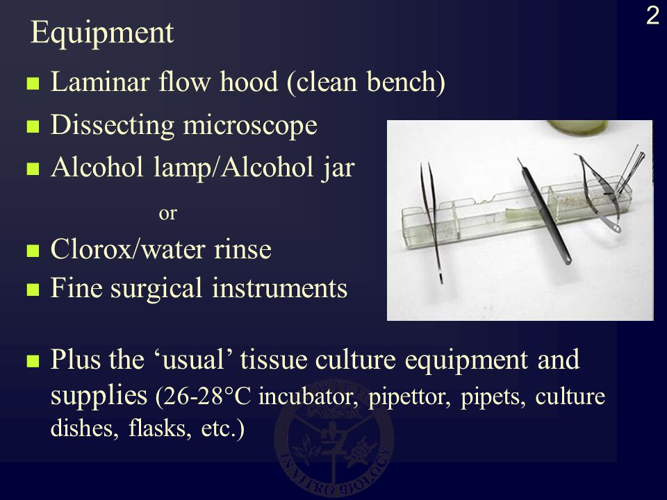 2 Equipment Laminar flow hood (clean bench) Dissecting microscope Alcohol lamp/Alcohol jar or Clorox/water rinse Fine surgical instruments Plus the usual tissue culture equipment and supplies (26-28°C incubator, pipettor, pipets, culture dishes, flasks, etc.)