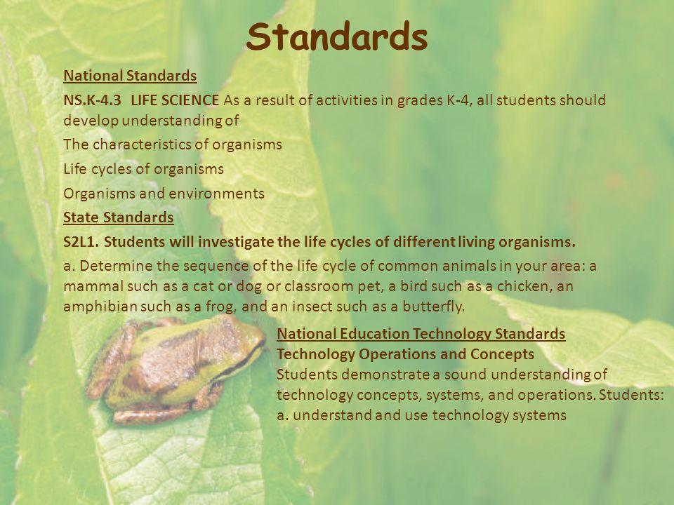 Standards National Standards NS.K-4.3 LIFE SCIENCE As a result of activities in grades K-4, all students should develop understanding of The character