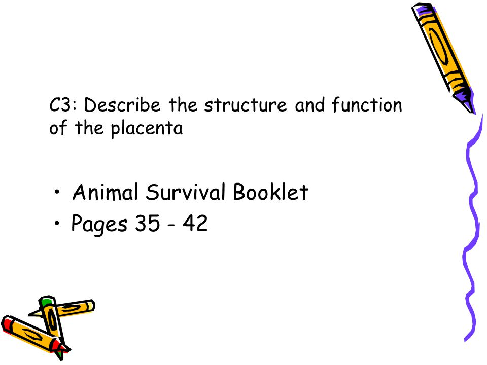 C3: Describe the structure and function of the placenta Animal Survival Booklet Pages 35 - 42