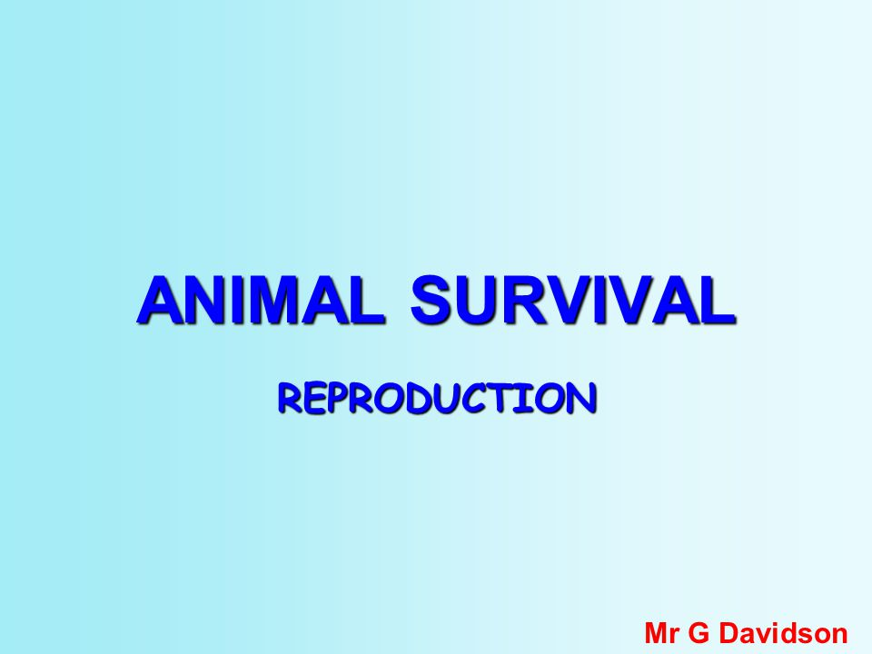 ANIMAL SURVIVAL REPRODUCTION Mr G Davidson