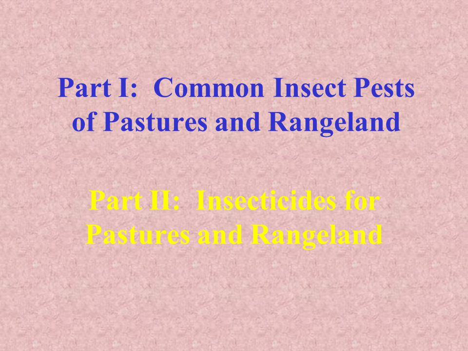 Common Insects Submitted from Pasture & Rangeland Army cutworm, Euxoa auxiliaris Armyworm, Pseudaletia unipuncta Black grass bugs, Labops & Irbisia Cereal leaf beetle, Oulema melanopus Grasshoppers, Melanoplus & Camnula Mormon cricket, Anabrus simplex