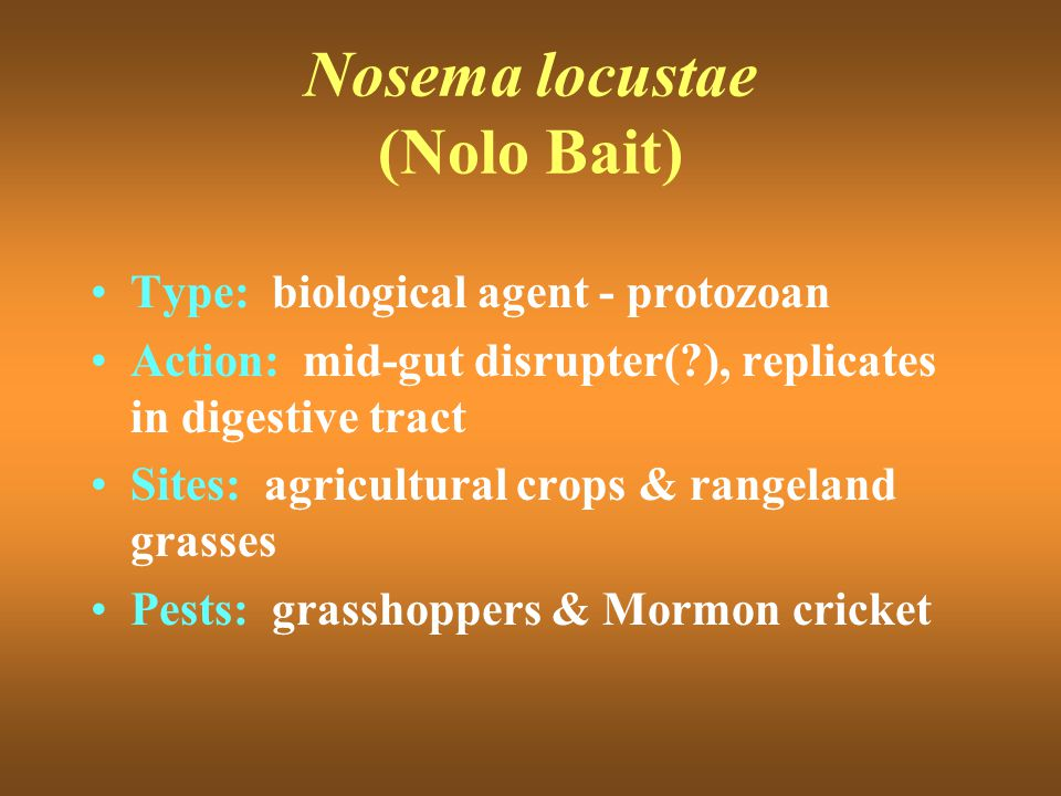 Nosema locustae (Nolo Bait) Type: biological agent - protozoan Action: mid-gut disrupter(?), replicates in digestive tract Sites: agricultural crops &