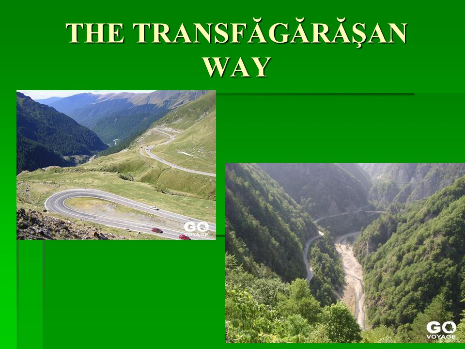 THE TRANSFĂGĂRĂŞAN WAY