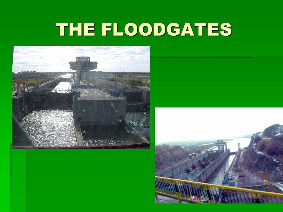 THE FLOODGATES
