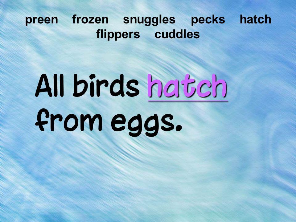 hatch All birds hatch from eggs. preen frozen snuggles pecks hatch flippers cuddles