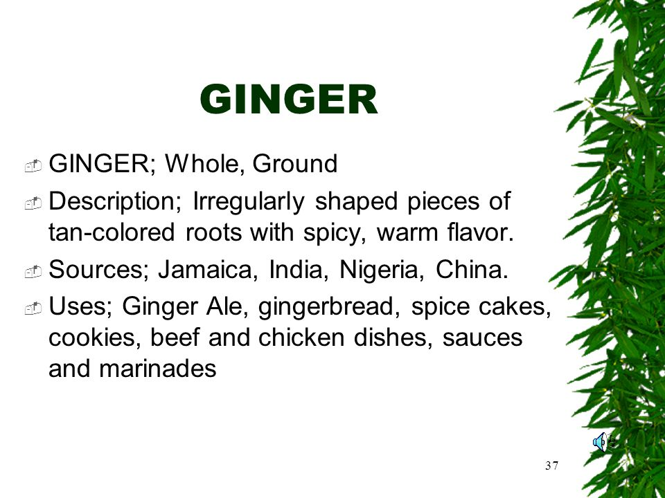 37 GINGER GINGER; Whole, Ground Description; Irregularly shaped pieces of tan-colored roots with spicy, warm flavor.